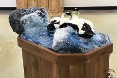eider-water-wave-scene-taxidermy-2