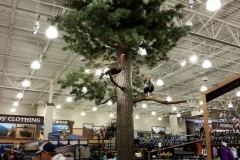 cabelas-turkeys-on-tree-Medium (1)