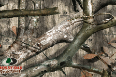 treestand-pattern