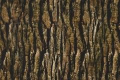 deep bark