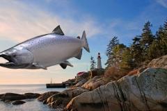 salmon replica